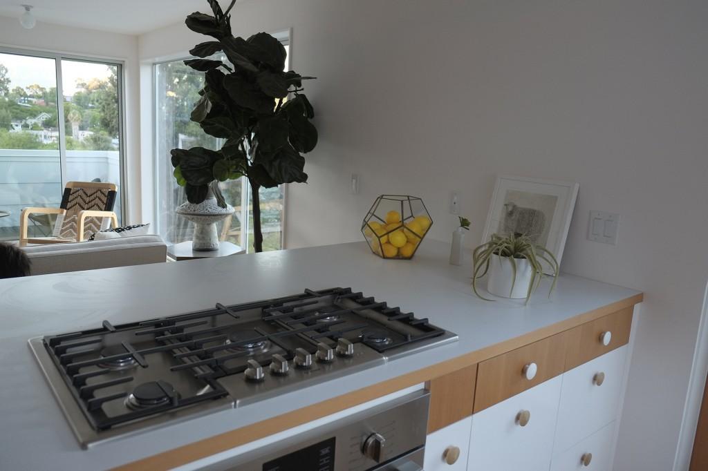 Blackbird Housing-kitchen-sink