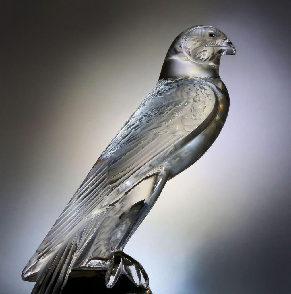 Falcon-p37